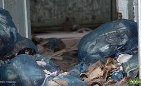 С 1 января в Прикамье вырастет тариф за вывоз мусора