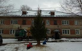 Установка живых ёлок на придомовых территориях