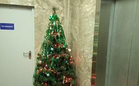 Установка новогодних елок в доме по адресу 1-я Красноармейская, 5