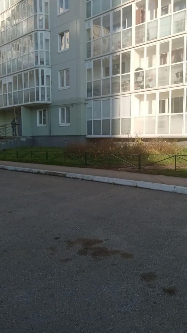 Монтаж газонного ограждения на придомовой территории